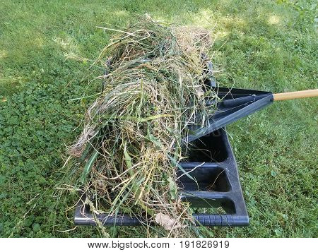 black rake and black wheelbarrow filled with grass