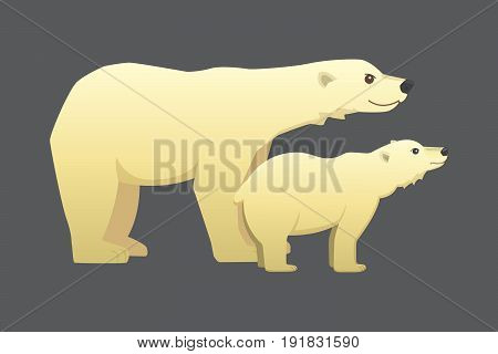 Polar white bear vector cartoon arctic animal