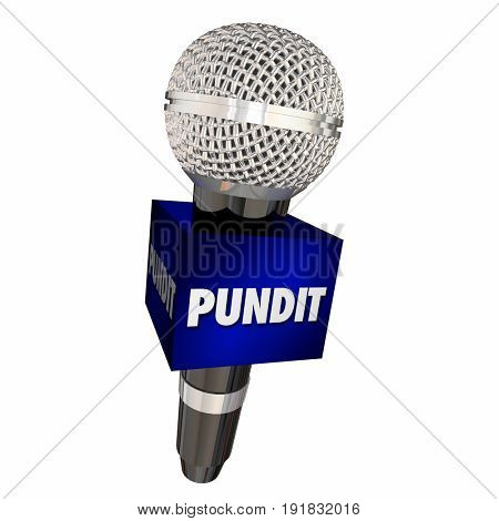 Pundit Expert Microphone Interview Show 3d Illustration