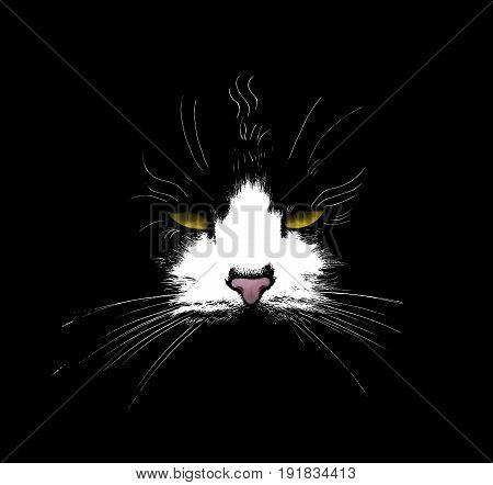 High Contrast illustration of a cat on a black background