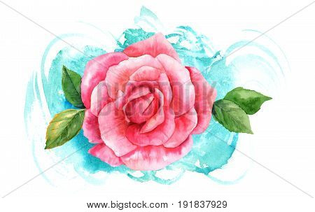 A watercolor drawing of a vibrant pink rose flower, painted in the style of vintage botanical art, on a turquoise blue brush stroke texture. Decorative element for greeting card or wedding invitation