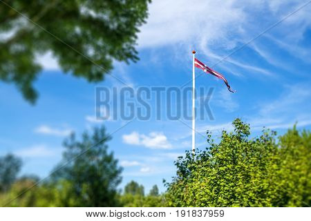 Danish pennant on a white flagpole in a green garden in the summer