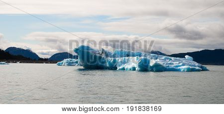 Glacier ice takes on a blue color in the sunshine