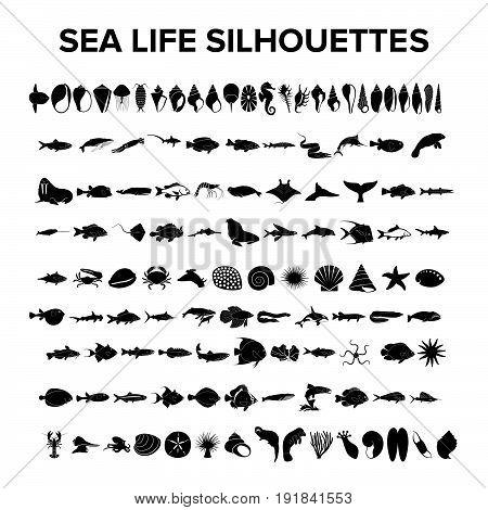 Sea life collection. Illustration design. Fully editable vector
