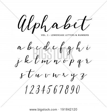 Hand drawn vector alphabet. Script font. Isolated letters written with marker, ink, calligraphy, lettering