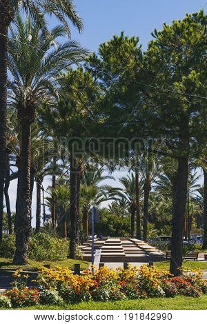 Palm Trees And Detail Of A Mediterranean City Garden In Antibes