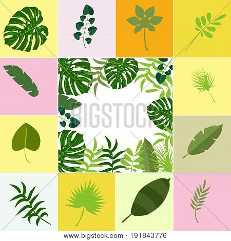 Tropical leaves palm summer exotic jungle green leaf vector illustration. Tropical plant botanical hawaii nature decoration floral green leaves. Flower tropic beach monstera tree.