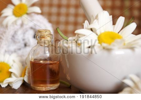 Closeup of an herbalist station preparing some fresh chamomile essential oils for bottles.