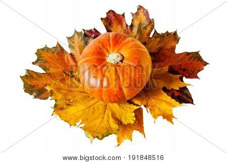 Orange pumpkin with maple leaves isolated on white background