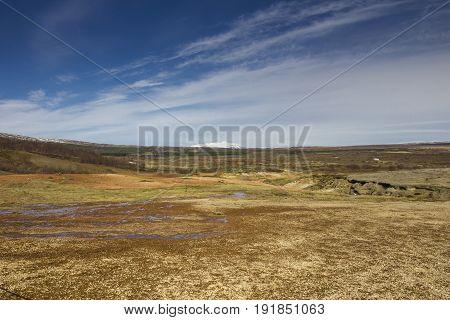 Icelandic tundra with volcano on the horizon.