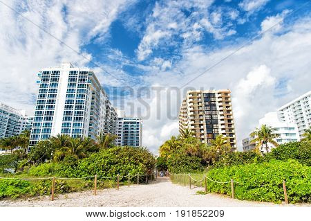 miami. south beach. summer vacation Idyllic sandy path way from beach with green palm trees to high rise apartment houses or buildings. City skyline. Urban landscape