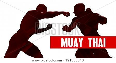 Muay thai Class with Silhouette of Two Men Fighting 3D Illustration Render