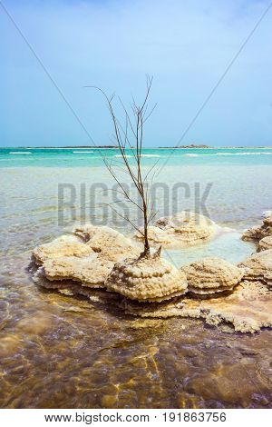 Forever Living Dead Sea. Picturesque islands of medicinal salt in the lake. The concept of ecological and therapeutic tourism. Israel, spring