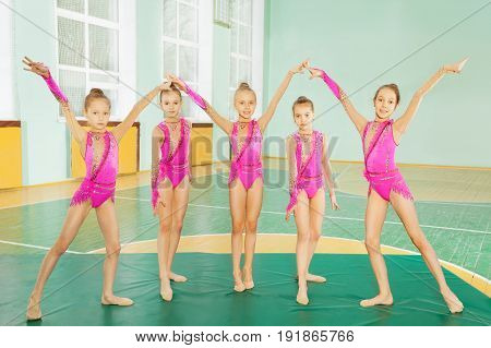 Group of 11-12 years old girls wearing pink leotards, practicing rhythmic gymnastics, standing on row in school gymnasium