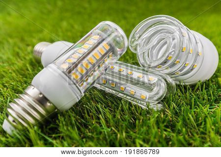 various types of ecological and economical LED bulbs like the CFL lamps in the green grass
