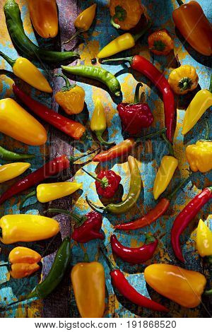 Green, red, yellow and orange peppers on blue background