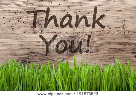 English Text Thank You. Spring Season Greeting Card. Bright Aged Wooden Background With Gras.