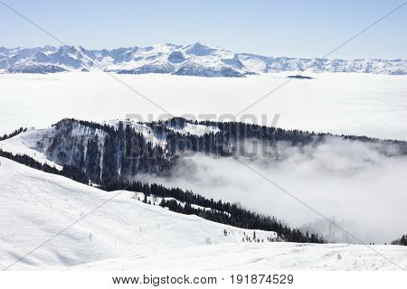 Beautiful mountains in forest in ski resort, Krasnaya Polyana, Sochi, Russia in winter sunny day