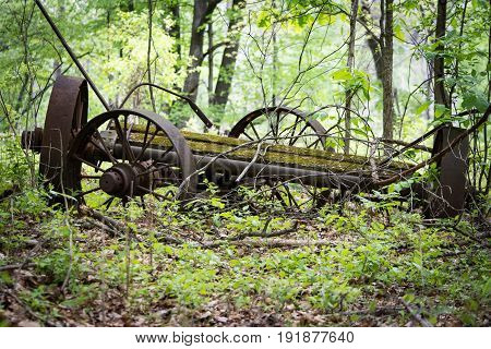 old wagon remains that nature is reclaiming.