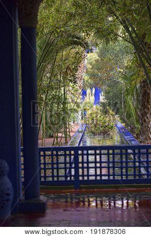 Majorelle colourful gardens Marrakech on rainy day