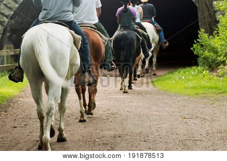 A family is horseback riding on a dirt trail that goes into a tunnel on fathers day