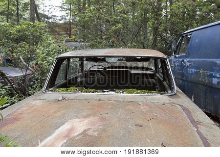 Wrecked and abandoned car and van in wooded junkyard.