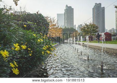 Park against modern buildings against Sky,shangha,ichina .