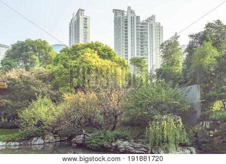 Park against modern buildings against Sky,shanghai,china .