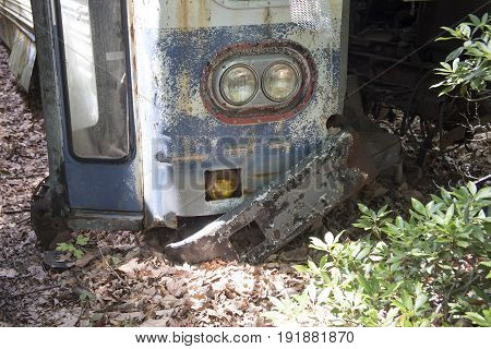 Front of rush old bus in wooded junkyard.