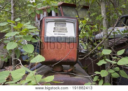 Antique gas pump on tank rusting in wooded junkyard.