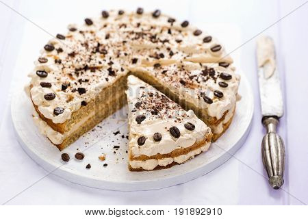Coffee cream layered cake on violet background