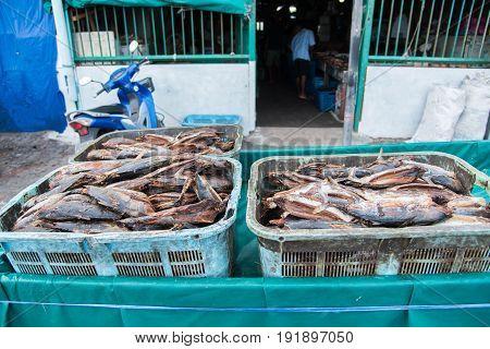 Tuna dry fish for sale at Fish market in MaleMaldives