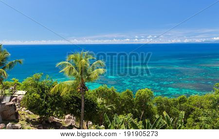 travel, landscape and nature concept - view to indian ocean from island with palm trees