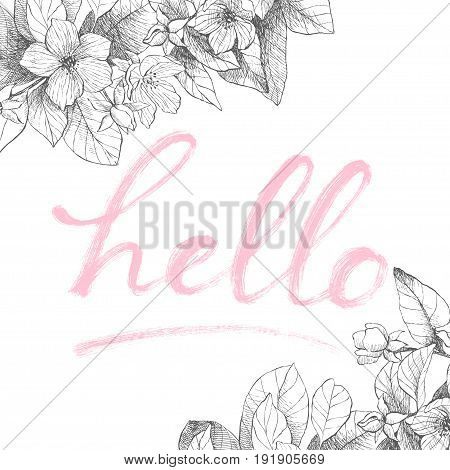 Vector hand drawing word Hello. Detailed flowers backdrop. Isolated, vintage style