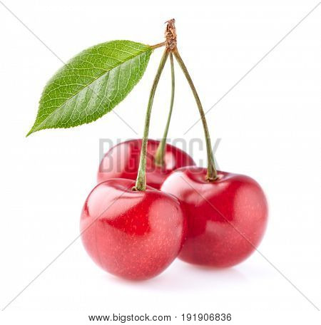 Cherry with leaves on a white background