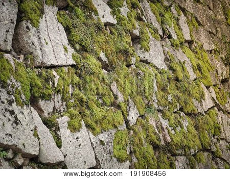 Beautiful stone with green moss in the park. Kyoto, Japan