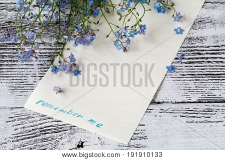 Forget-me-nots Flowers With Card On A Wooden Background