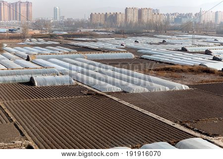 greenhouse farming and agriculture from the sky from above