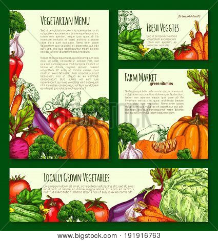 Vegetables and farm veggies vector posters and banners template. Farm harvest of pumpkin, carrot and cabbage or zucchini squash. Fresh tomato, potato or cucumber and cauliflower for vegetarian market