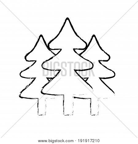 natural pine trees to ecology reserve vector illustration