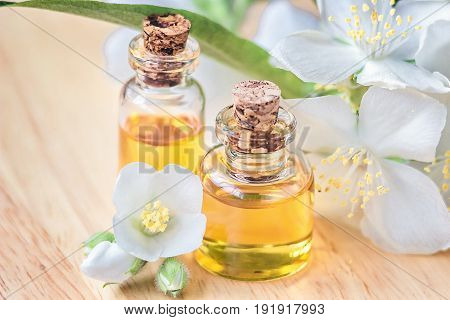 Essential oil in glass bottle with fresh jasmine flowers, beauty treatment. Spa concept Selective focus. Fragrant oil of jasmine flowers macro wooden table horizontal. Herbs have medicinal properties.