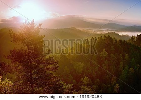 Deep Misty Valley Within Daybreak. Foggy And Misty Morning On The Hilly View Point