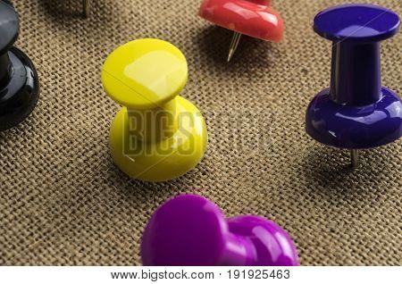 Macro shot of multi colored push pins