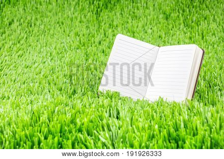 Open Ruled Paper Notebook On Green Grass Field,eco Business Concept