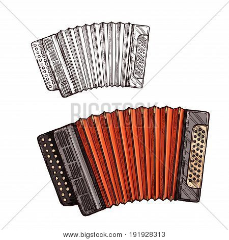 Accordion musical instrument. Vector sketch symbol of folk or national type of piano accordion or Russian bayan with button keys for ethnic music concert or festival design