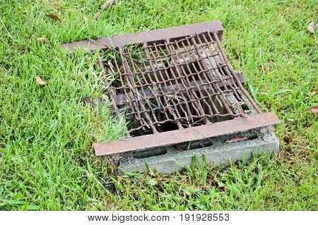 close up of grunge grate on the ground in nature garden