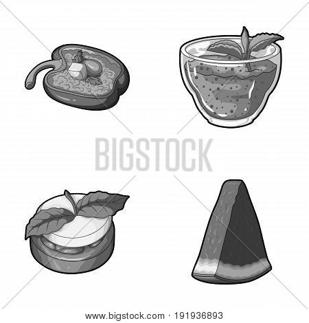 Sweet Bulgarian pepper, vitamin drink, jam with raspberry and mint leaves, a piece of watermelon. Vegetarian dishes set collection icons in monochrome style vector symbol stock illustration .