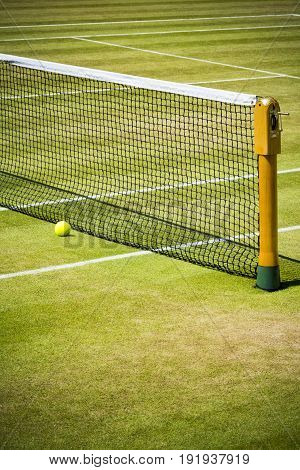 Tennis net and ball on grass court