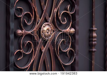 decorated magnificent wrought-iron gates ornamental forging forged elements close-up