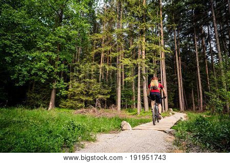 Mountain biker riding on bike in spring inspirational forest landscape. Man cycling MTB on enduro inspiring trail track. Sport fitness motivation and inspiration.